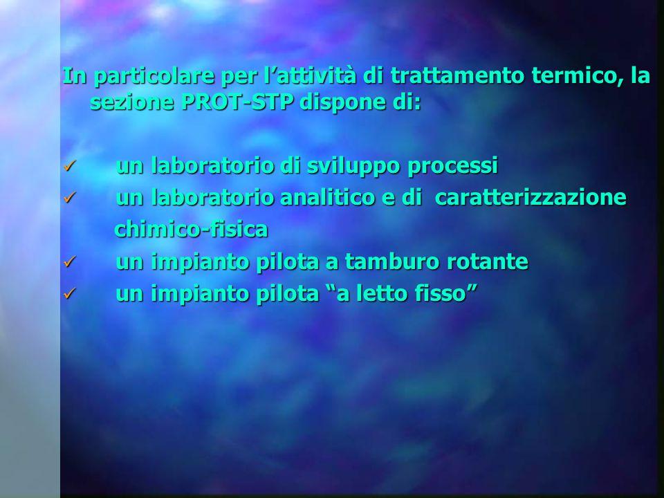 In particolare per l'attività di trattamento termico, la sezione PROT-STP dispone di: