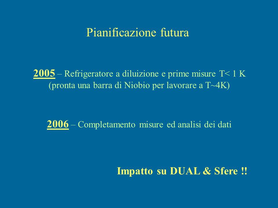 Pianificazione futura