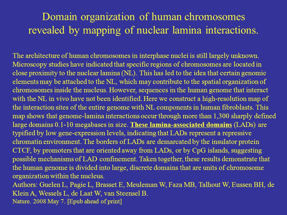 Domain organization of human chromosomes revealed by mapping of nuclear lamina interactions.
