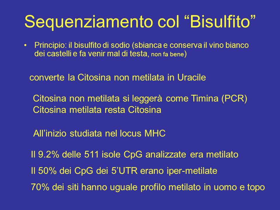 Sequenziamento col Bisulfito