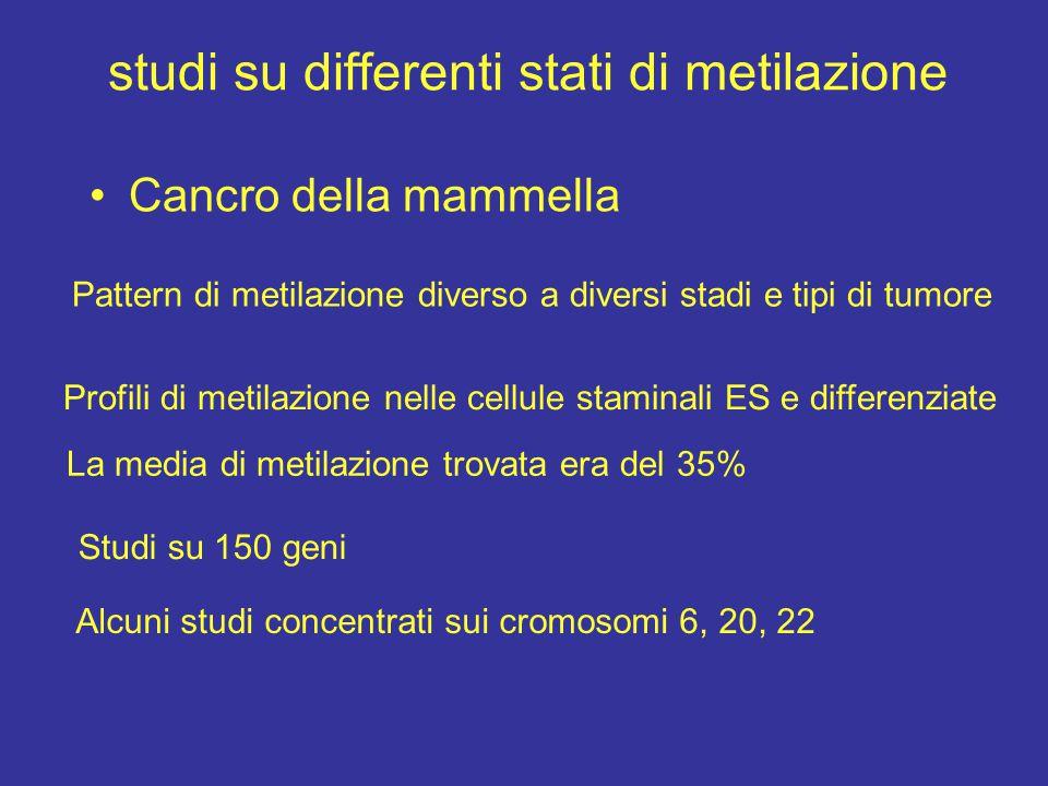 studi su differenti stati di metilazione