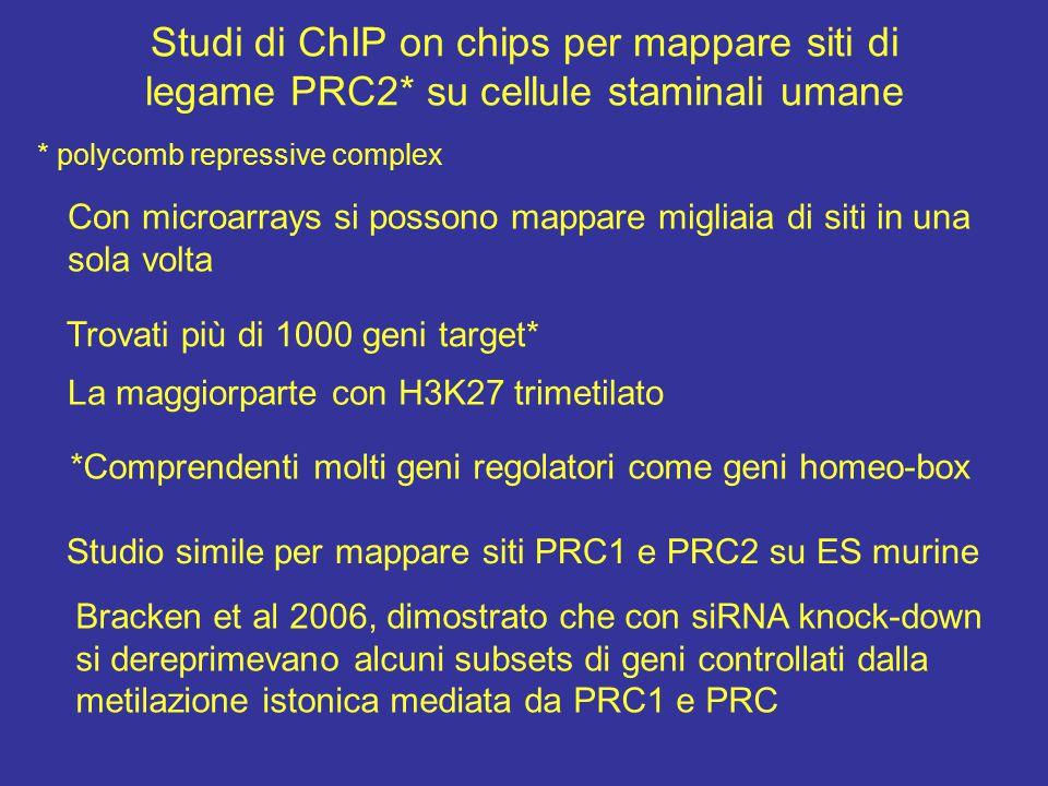 Studi di ChIP on chips per mappare siti di legame PRC2