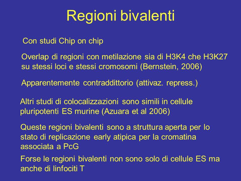 Regioni bivalenti Con studi Chip on chip