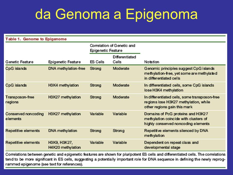 da Genoma a Epigenoma