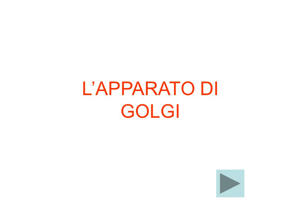 L'APPARATO DI GOLGI
