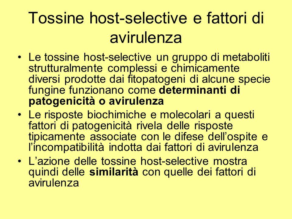 Tossine host-selective e fattori di avirulenza