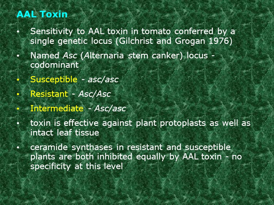 AAL Toxin Sensitivity to AAL toxin in tomato conferred by a single genetic locus (Gilchrist and Grogan 1976)