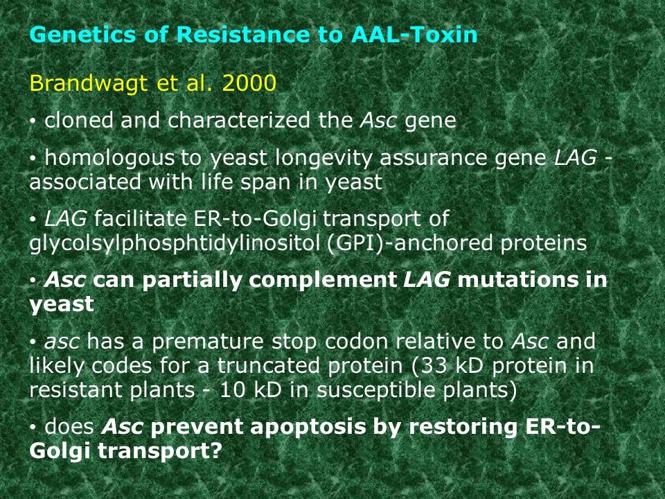 Genetics of Resistance to AAL-Toxin