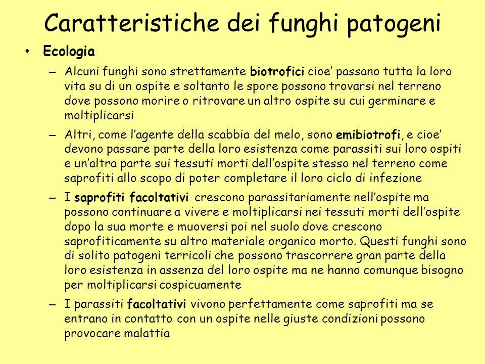 Caratteristiche dei funghi patogeni