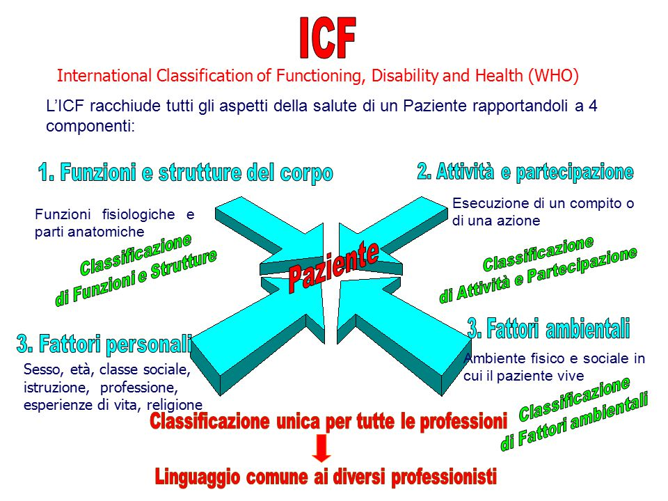ICF International Classification of Functioning, Disability and Health (WHO)