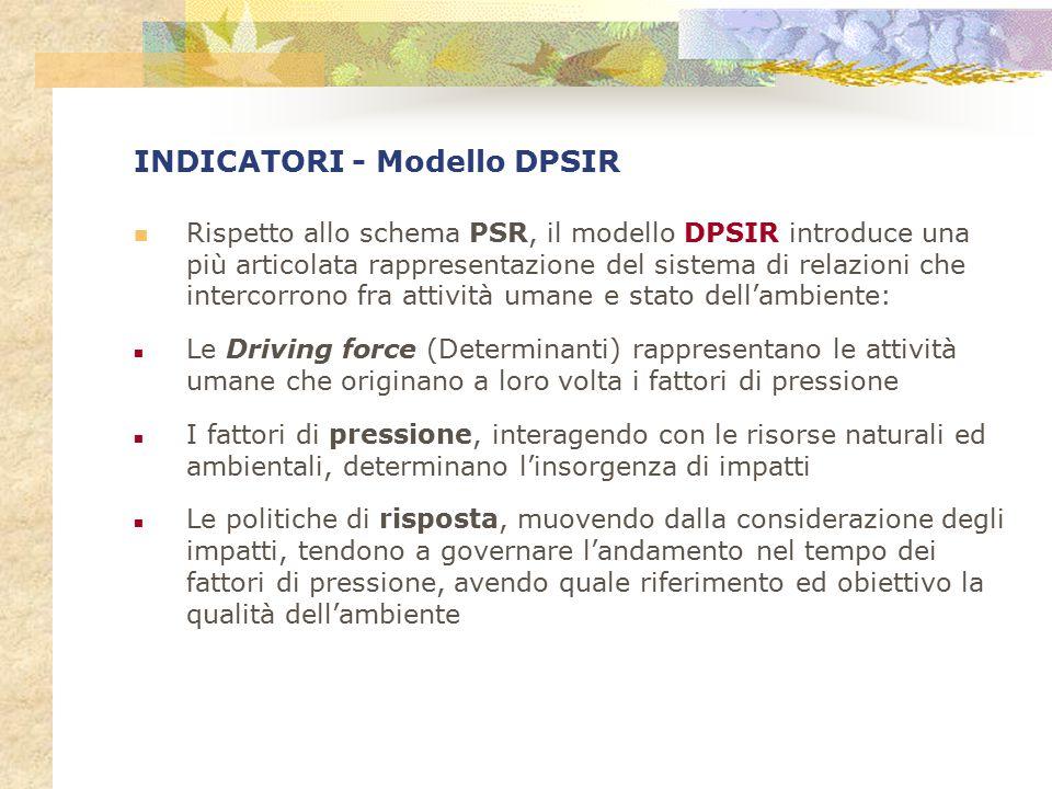 INDICATORI - Modello DPSIR