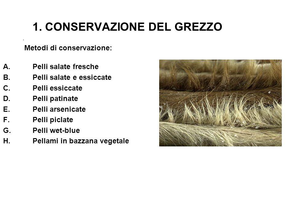1. CONSERVAZIONE DEL GREZZO