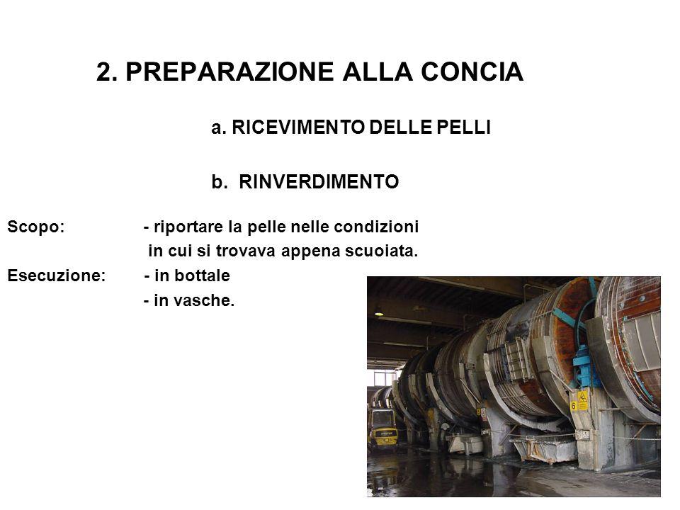 2. PREPARAZIONE ALLA CONCIA