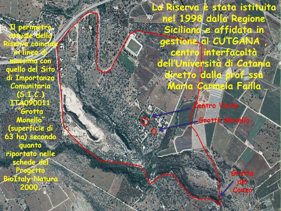Progetto BioItaly–Natura 2000.