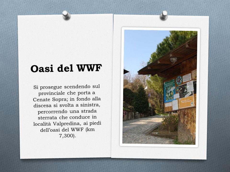 Oasi del WWF