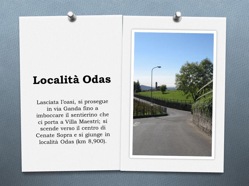 Località Odas