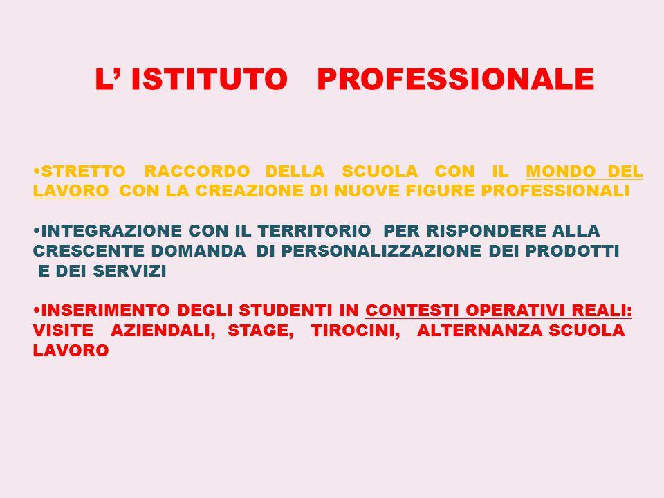 L' ISTITUTO PROFESSIONALE