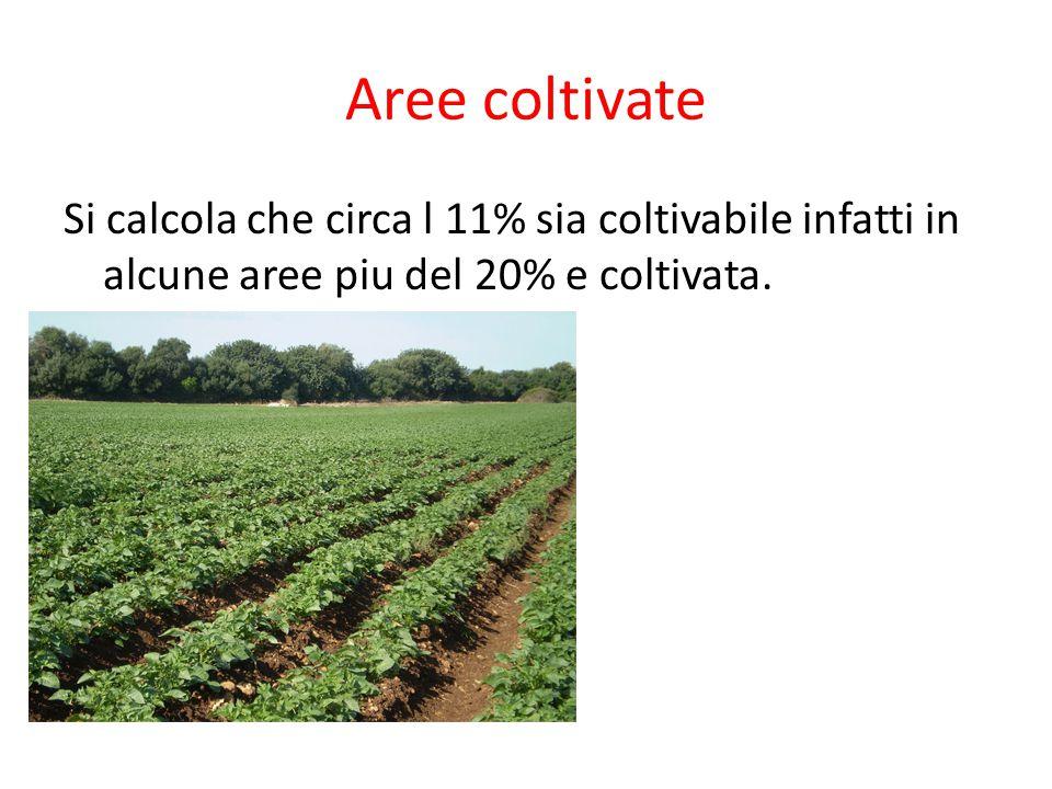 Aree coltivate Si calcola che circa l 11% sia coltivabile infatti in alcune aree piu del 20% e coltivata.