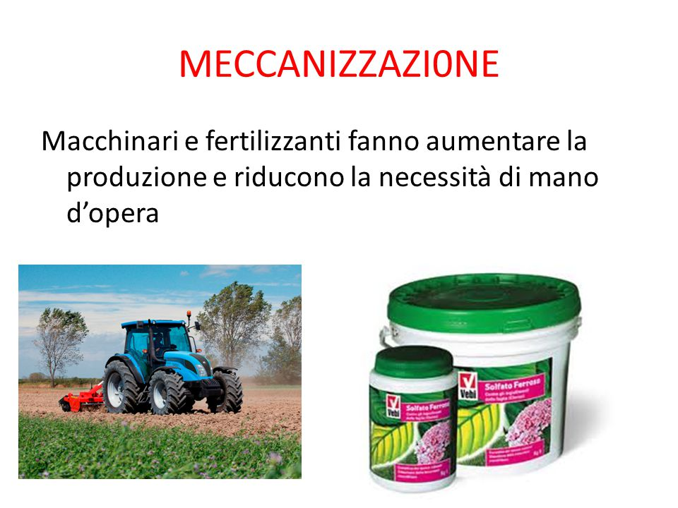 MECCANIZZAZI0NE Macchinari e fertilizzanti fanno aumentare la produzione e riducono la necessità di mano d'opera.