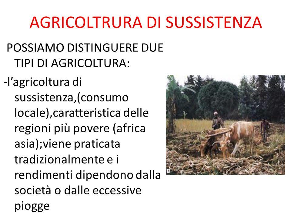 AGRICOLTRURA DI SUSSISTENZA