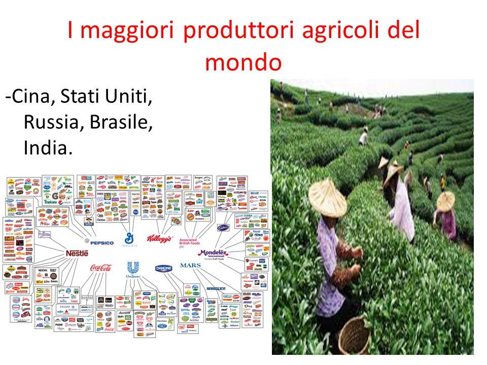 I maggiori produttori agricoli del mondo