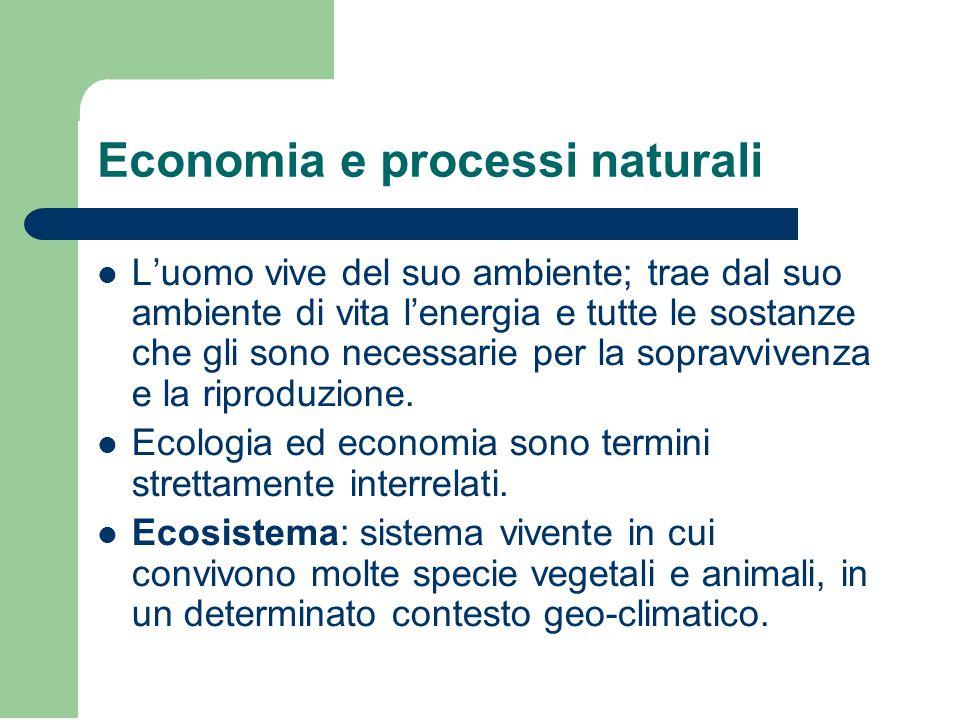 Economia e processi naturali