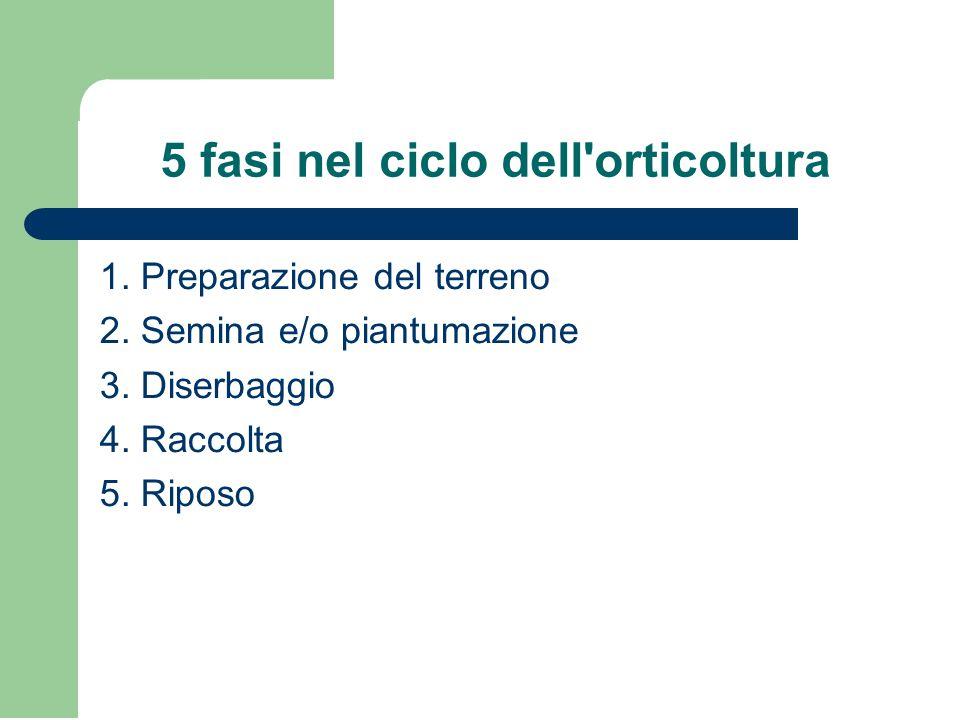 5 fasi nel ciclo dell orticoltura