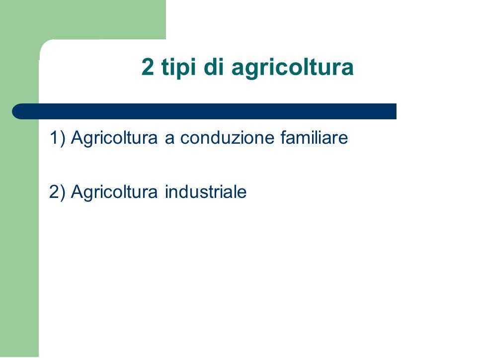 2 tipi di agricoltura 1) Agricoltura a conduzione familiare