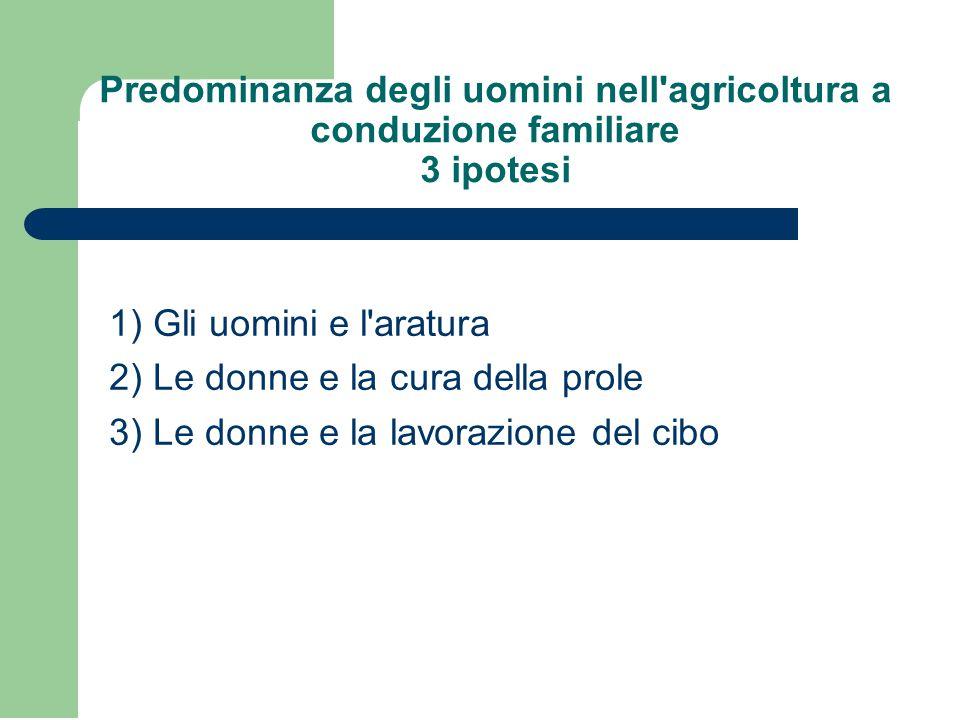 Predominanza degli uomini nell agricoltura a conduzione familiare 3 ipotesi