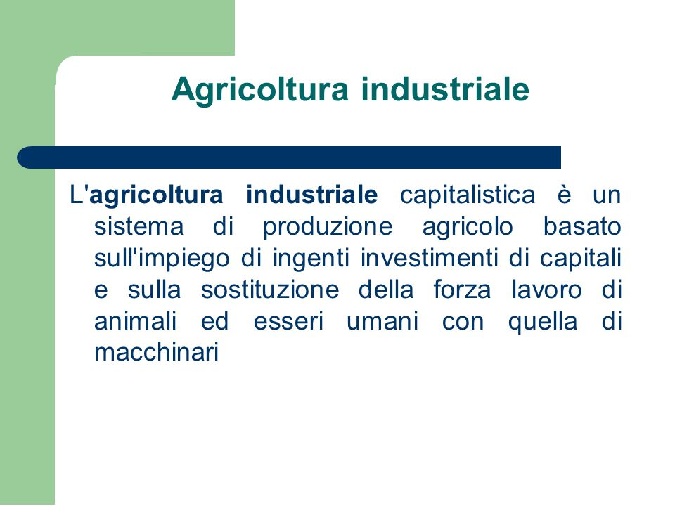 Agricoltura industriale
