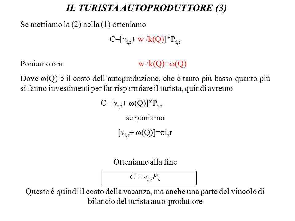 IL TURISTA AUTOPRODUTTORE (3)