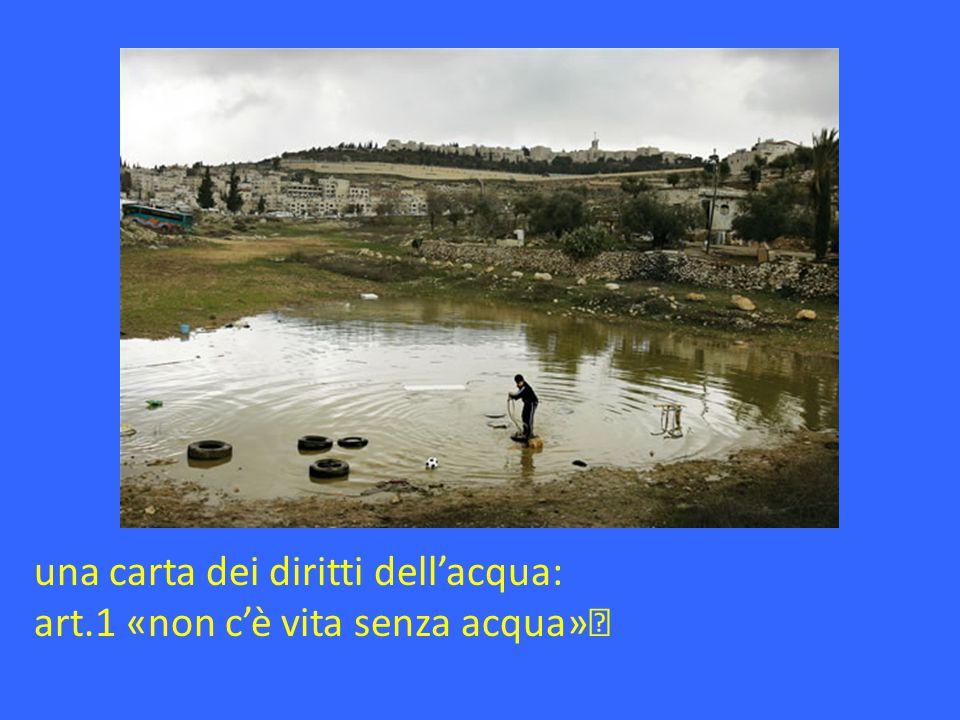una carta dei diritti dell'acqua: art.1 «non c'è vita senza acqua»