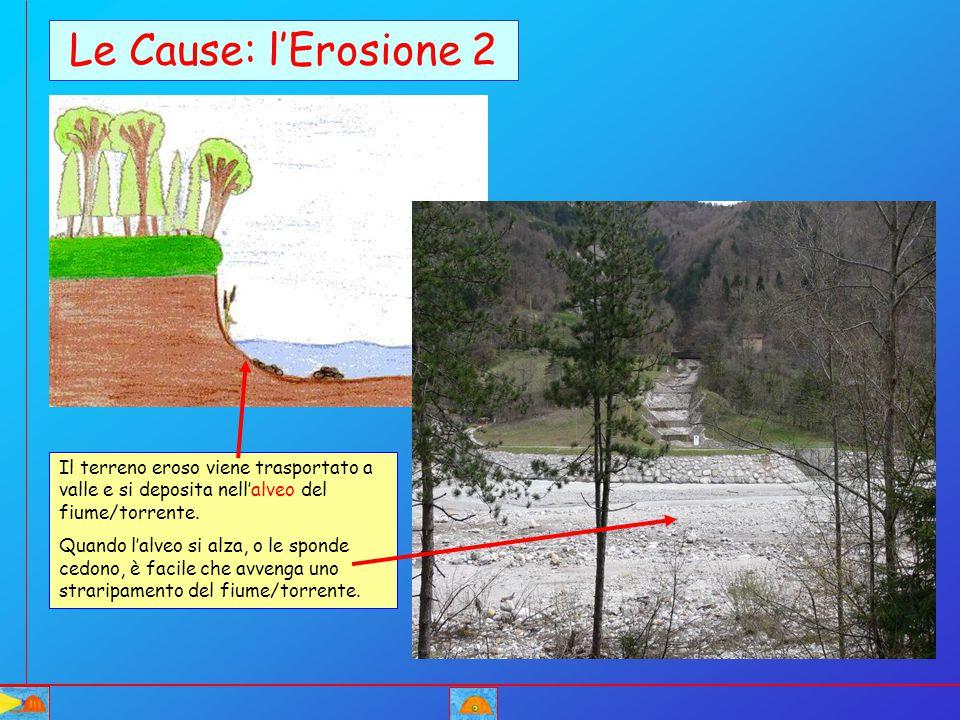 Le Cause: l'Erosione 2 Il terreno eroso viene trasportato a valle e si deposita nell'alveo del fiume/torrente.