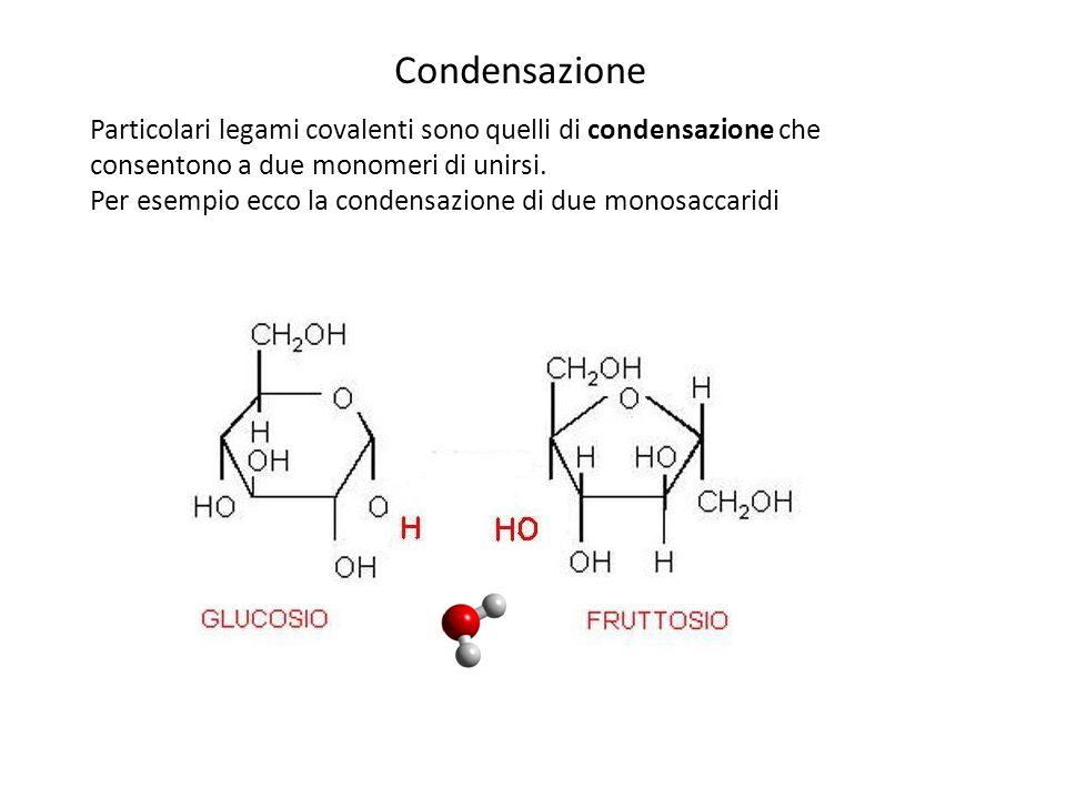 Condensazione Particolari legami covalenti sono quelli di condensazione che consentono a due monomeri di unirsi.