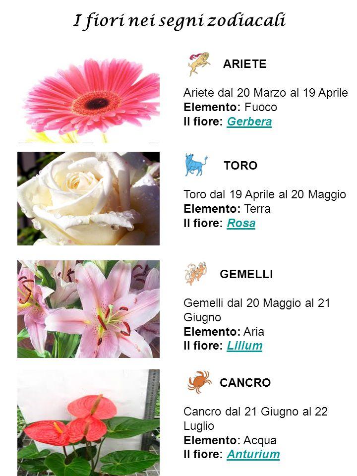 I fiori nei segni zodiacali