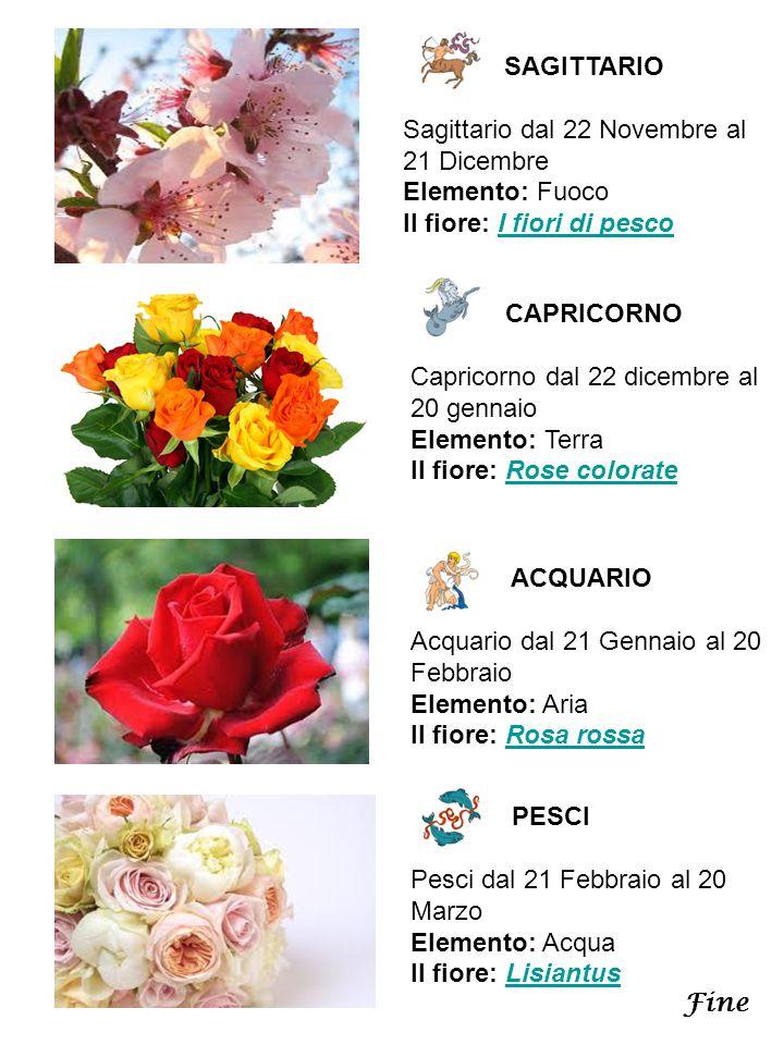 SAGITTARIO Sagittario dal 22 Novembre al 21 Dicembre Elemento: Fuoco Il fiore: I fiori di pesco. CAPRICORNO.