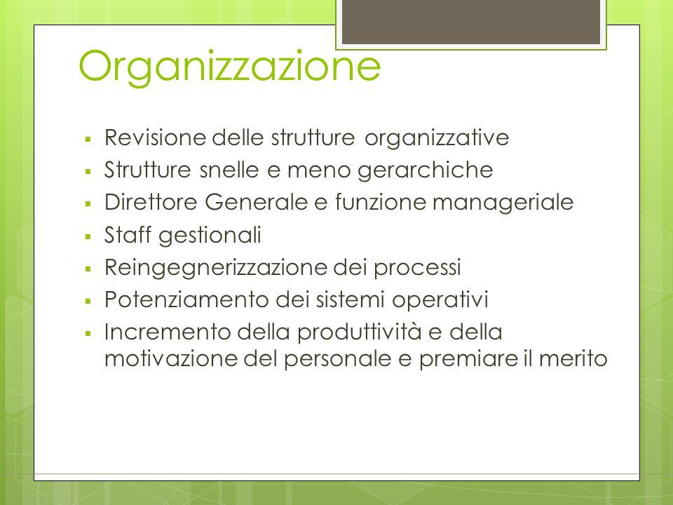 Organizzazione Revisione delle strutture organizzative