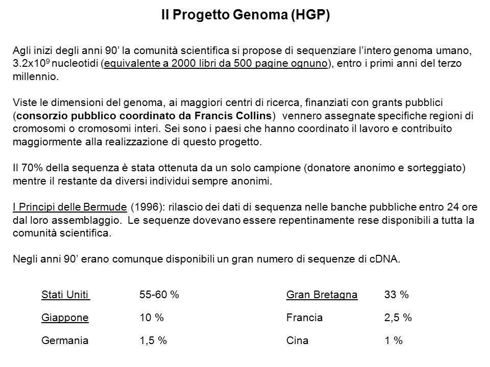 Il Progetto Genoma (HGP)