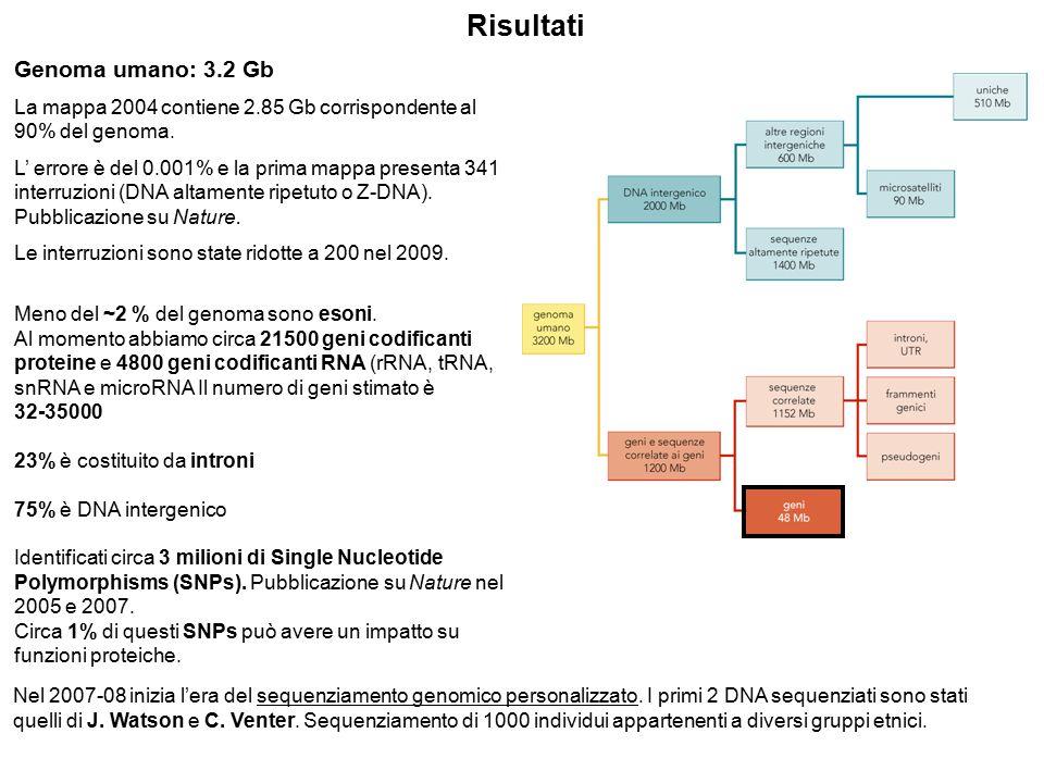 Risultati Genoma umano: 3.2 Gb