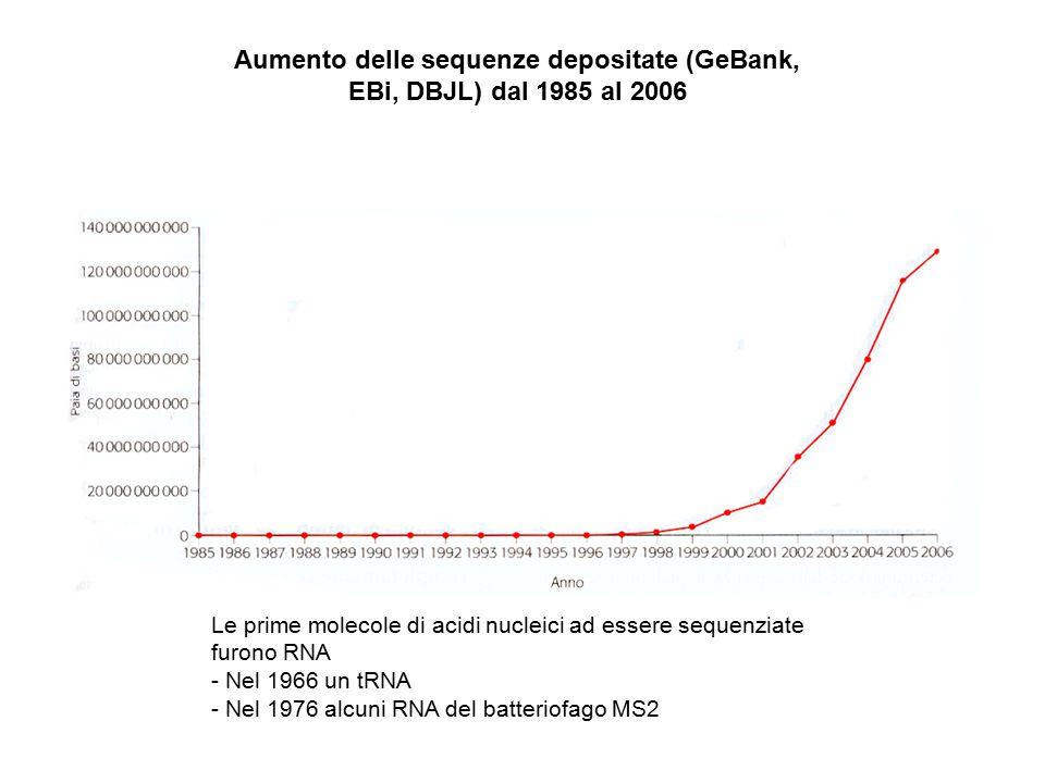 Aumento delle sequenze depositate (GeBank, EBi, DBJL) dal 1985 al 2006