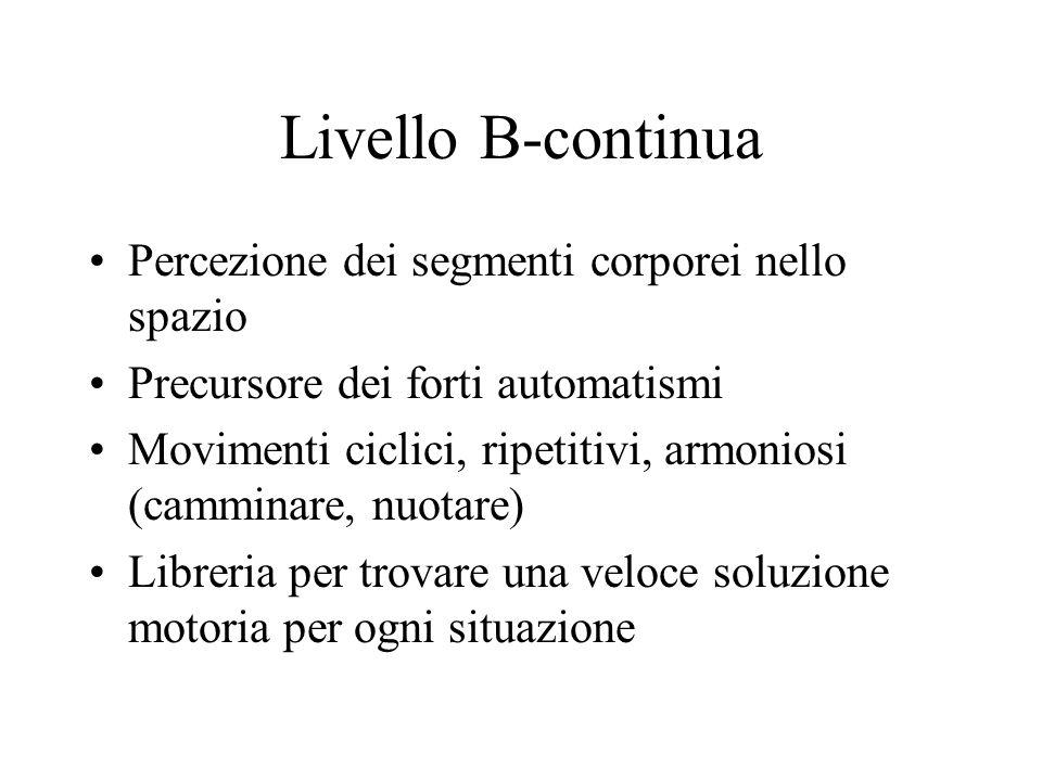 Livello B-continua Percezione dei segmenti corporei nello spazio