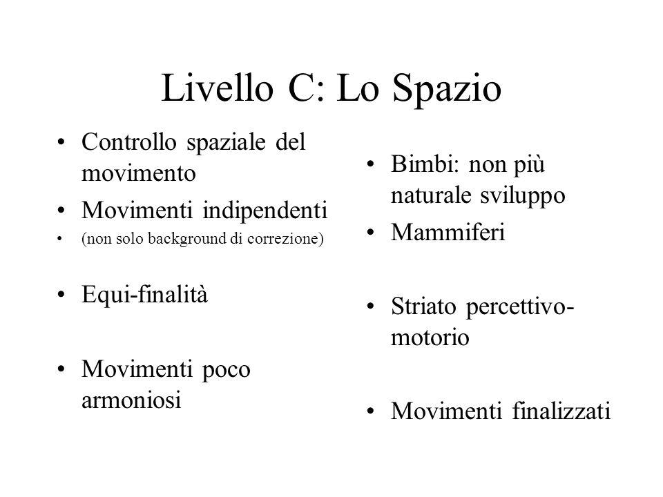 Livello C: Lo Spazio Controllo spaziale del movimento