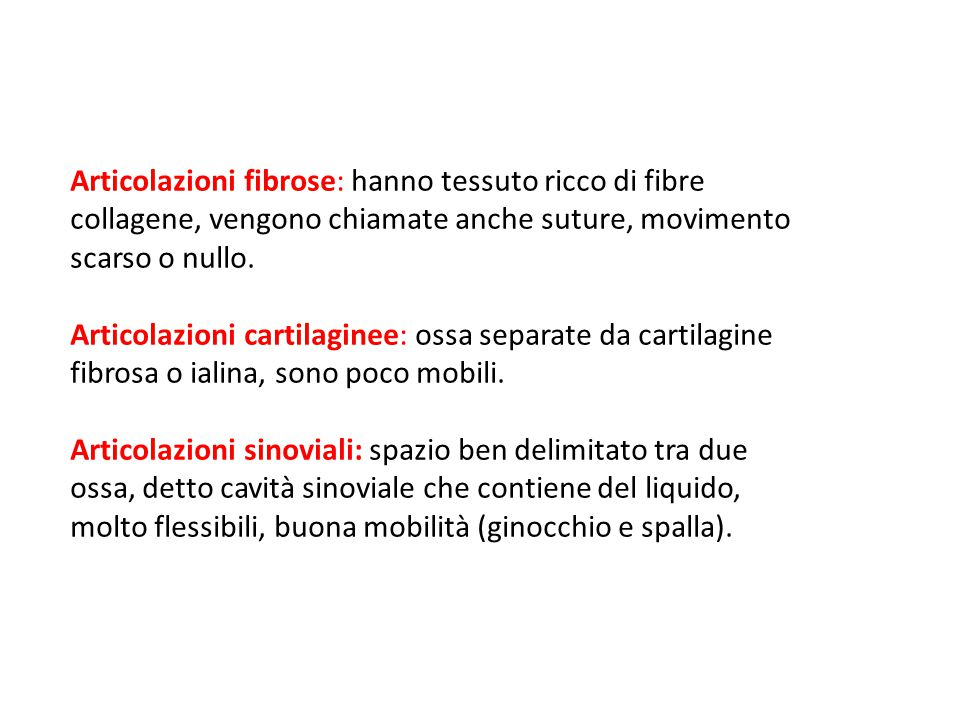 09/09/12 27/11/11. Articolazioni fibrose: hanno tessuto ricco di fibre collagene, vengono chiamate anche suture, movimento scarso o nullo.
