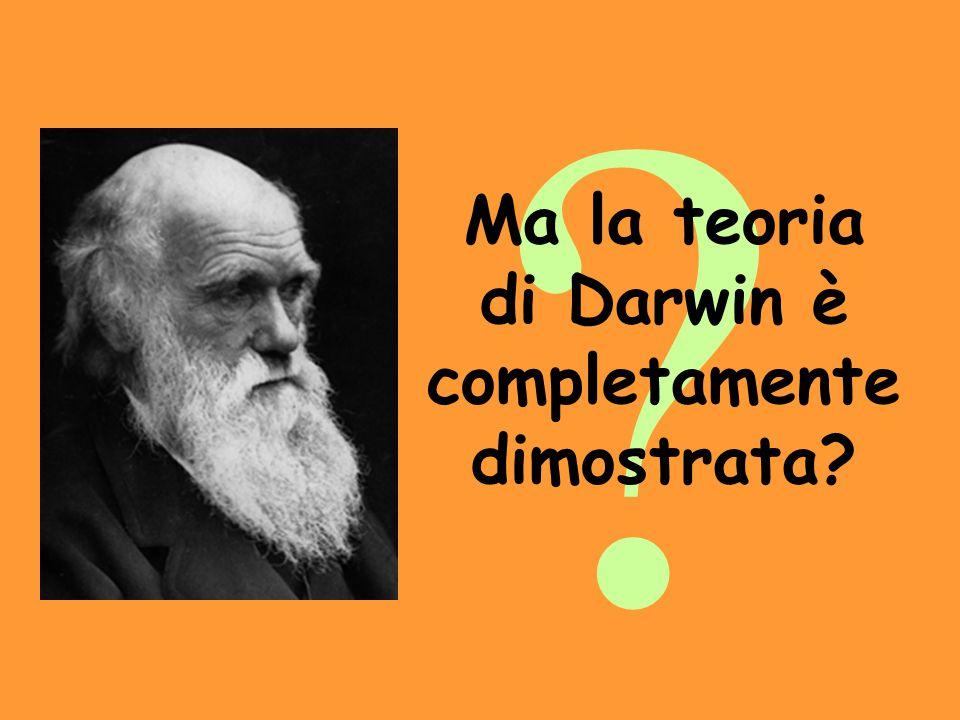 Ma la teoria di Darwin è completamente dimostrata