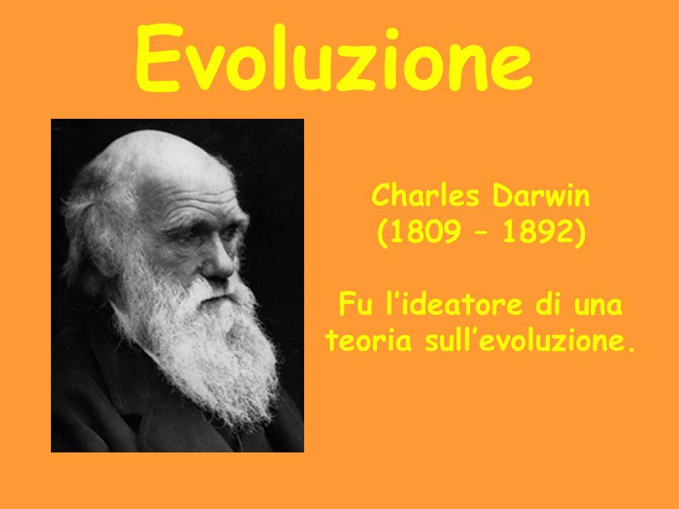 Fu l'ideatore di una teoria sull'evoluzione.