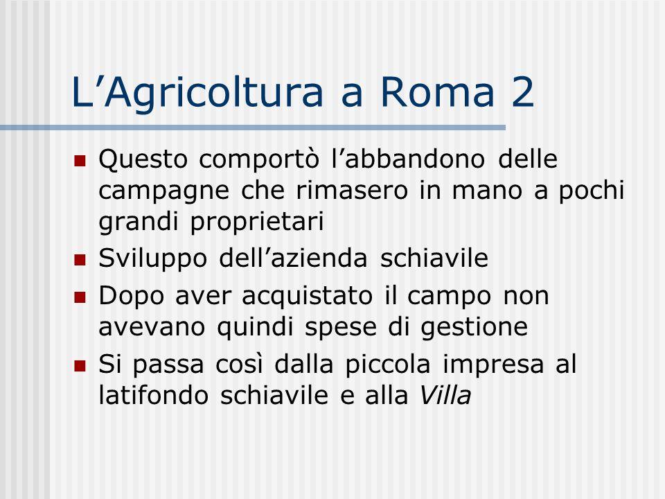 L'Agricoltura a Roma 2 Questo comportò l'abbandono delle campagne che rimasero in mano a pochi grandi proprietari.