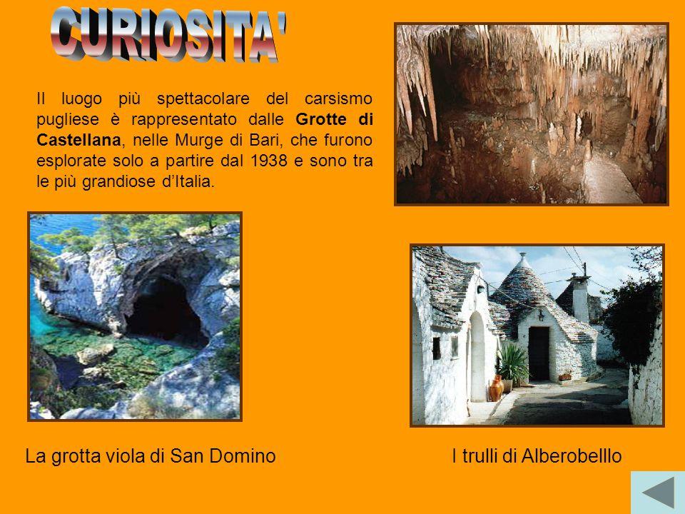 I trulli di Alberobelllo