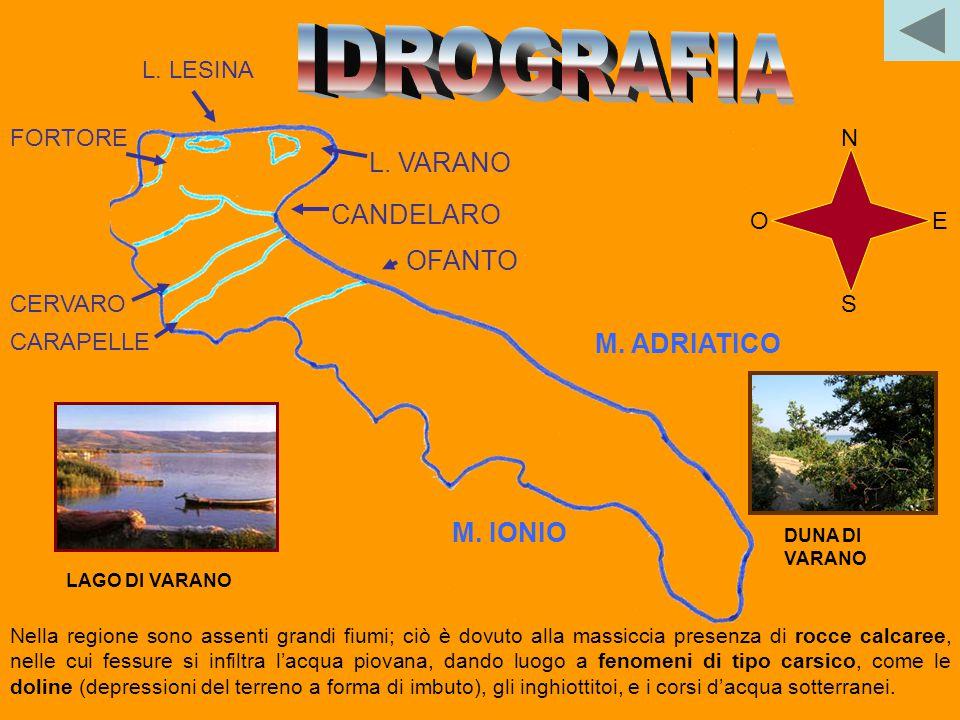 IDROGRAFIA L. VARANO CANDELARO OFANTO M. ADRIATICO M. IONIO L. LESINA