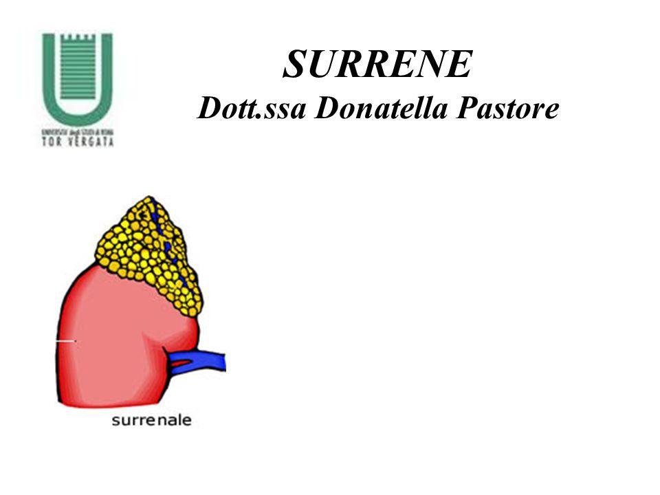 Dott.ssa Donatella Pastore