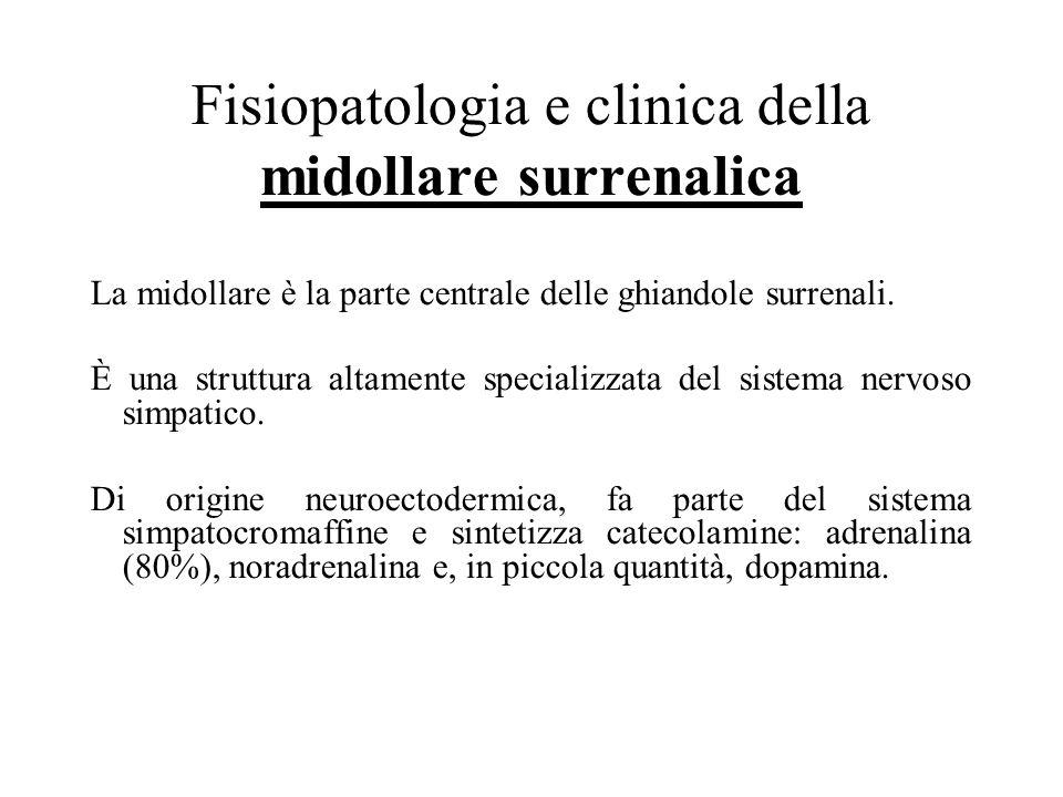 Fisiopatologia e clinica della midollare surrenalica
